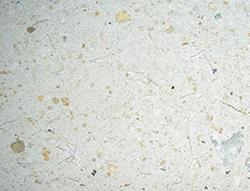 https://www.betons-decoratifs.com/sites/default/files/2021-02/articimo-boucharde-2%5B1%5D.jpg